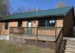 Foreclosed Home en WALLAKER RD, Benzonia, MI - 49616
