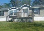 Foreclosed Home en J W MCLEAN RD, Clio, AL - 36017