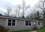 Foreclosed Home en S BROADWAY, Idlewild, MI - 49642