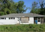 Foreclosed Home en RAY RAMSEY RD, Jacobsburg, OH - 43933