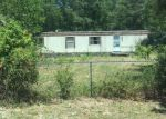 Foreclosed Home en GINNY LN, Glen Saint Mary, FL - 32040