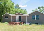 Foreclosed Home en S SILVER DR, White Cloud, MI - 49349