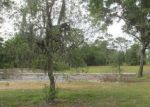 Foreclosed Home in PINE TREE DR, Saint Cloud, FL - 34772