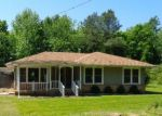 Foreclosed Home en GILBERTSVILLE HWY, Gilbertsville, KY - 42044