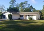 Foreclosed Home en BRUCE LN, Palm Coast, FL - 32137