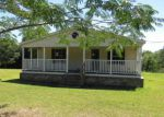 Foreclosed Home en H K LEWIS RD, Carriere, MS - 39426