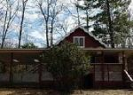 Foreclosed Home en DORT RD, Roscommon, MI - 48653