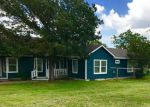 Foreclosed Home en WELLS SCHOOL RD, Manor, TX - 78653