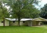 Foreclosed Home en CONRAD RD, Erath, LA - 70533