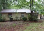 Foreclosed Home en S STATE ROAD 19, Palatka, FL - 32177