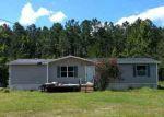 Foreclosed Home en ROCKY BLUFF TRL, Crawfordville, FL - 32327