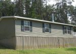 Foreclosed Home en POSEY HOLLOW RD, Berkeley Springs, WV - 25411