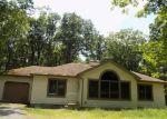 Foreclosed Home en SEGATTI CIR, Bushkill, PA - 18324