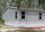 Foreclosed Home en APACHE JCT, Keystone Heights, FL - 32656
