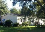Foreclosed Home en SW SUNVIEW ST, Fort White, FL - 32038