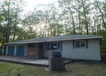 Foreclosed Home en POPLAR AVE, Grayling, MI - 49738