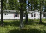 Foreclosed Home en ORCHARD RD, Sesser, IL - 62884