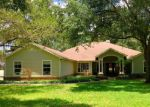 Foreclosed Home in FOX TRACE CT, Lutz, FL - 33549