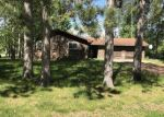 Foreclosed Home en BONNEY DUNE DR, Mosinee, WI - 54455