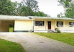 Foreclosed Home en DYER RD, Evensville, TN - 37332