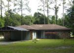 Foreclosed Home en E KEEPSAKE LN, Hernando, FL - 34442