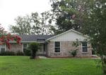 Foreclosed Home en KIRKWALL ST, Orange Park, FL - 32065