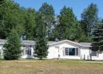 Foreclosed Home en MAPLE RIVER RD, Brutus, MI - 49716
