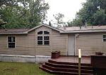 Foreclosed Home en N CROOKED LAKE DR, Lake, MI - 48632