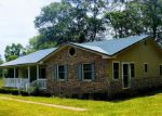 Foreclosed Home en STEVERSON RD, Bonifay, FL - 32425