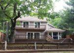 Foreclosed Home en N GOLDEN SANDS DR, Mears, MI - 49436