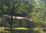 Foreclosed Home en HUMPHREY MILL RD, Mineral Bluff, GA - 30559