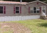 Foreclosed Home en N DAWSON DR, Hernando, FL - 34442