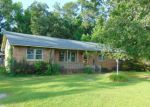 Foreclosed Home en WATERSIDE DR, Bath, NC - 27808