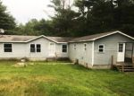 Foreclosed Home en S 144TH AVE, Hesperia, MI - 49421