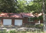 Foreclosed Home en COUNTY ROAD 580, Fisk, MO - 63940