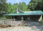 Foreclosed Home en WILDER RD, Spring City, TN - 37381