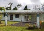 Foreclosed Home en PUHALA DR, Pahoa, HI - 96778