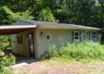 Foreclosed Home en SUNFISH CREEK RD, Piketon, OH - 45661