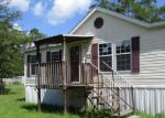 Foreclosed Home en MEDLOCK ST, Interlachen, FL - 32148