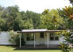 Foreclosed Home en W WOLF VALLEY RD, Clinton, TN - 37716