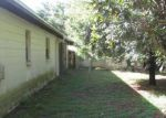Foreclosed Home in BRANDYWINE DR, Lutz, FL - 33549