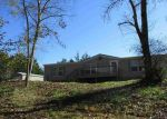 Foreclosed Home en PHILLIPS HOLLOW RD, Bybee, TN - 37713