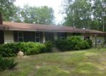 Foreclosed Home en S WALHALLA RD, Branch, MI - 49402