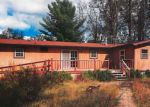 Foreclosed Home en PINE RD, Marion, MI - 49665