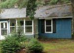 Foreclosed Home en S REAM RD, Mio, MI - 48647