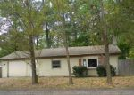 Foreclosed Home en LINCOLN LAKE AVE, Gowen, MI - 49326