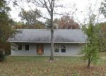 Foreclosed Home en CANNON MINES RD, Cadet, MO - 63630