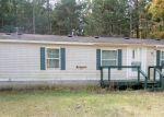 Foreclosed Home en BYBEE CT, Bitely, MI - 49309