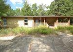 Foreclosed Home en CREWS LAKE RD, Ebro, FL - 32437