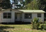Foreclosed Home en ALTON WENTWORTH RD, Greenville, FL - 32331